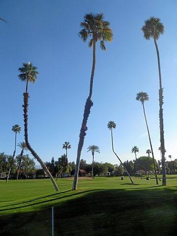 PAD6 - Rancho Las Palmas Country Club - 2 BDRM, 2 BA - Image 1 - Rancho Mirage - rentals