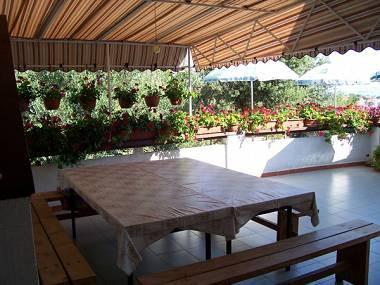 SA2(2+1): common terrace - 5055 SA2(2+1) - Kukljica - Kukljica - rentals