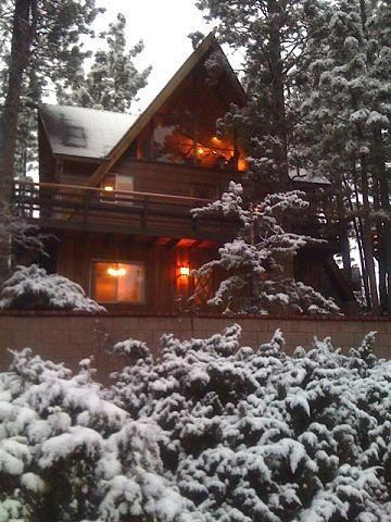 Absolute Wilki - Image 1 - Big Bear Lake - rentals
