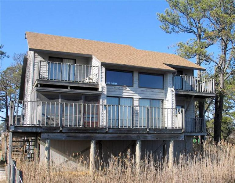Golden Goose - Image 1 - Chincoteague Island - rentals