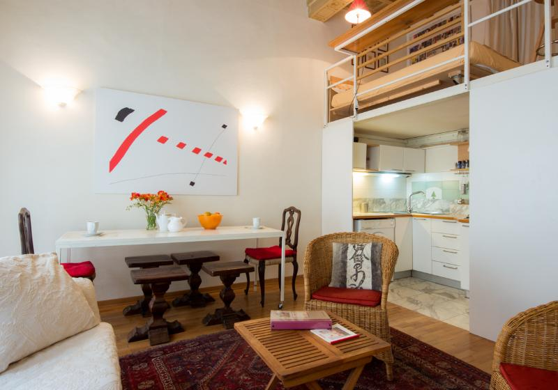 the living - MASSIMO- largeCOZY LOFT for two, by the Duomo - Florence - rentals