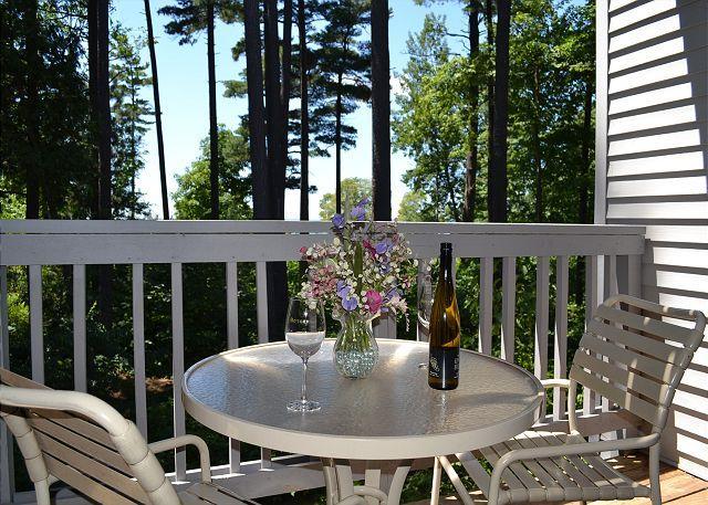 Enjoy the View! - Image 1 - Acme - rentals