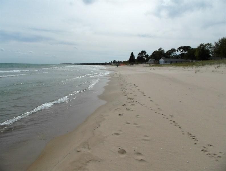 Board Walk Beach 2 - Tree House - Image 1 - Oscoda - rentals