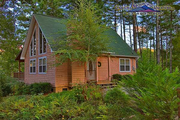 Eagles Nest Cabin - Image 1 - Bryson City - rentals