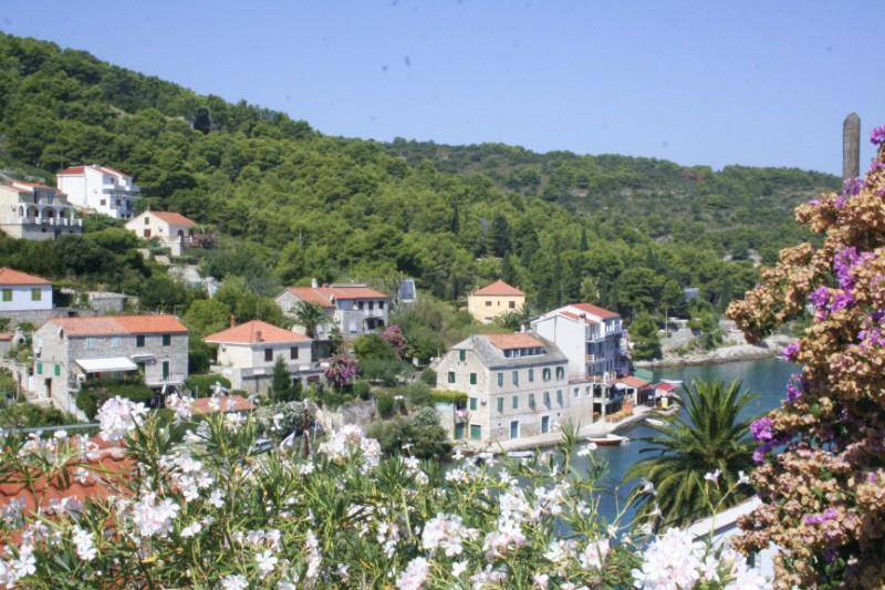 Seaside stone house for rent, Island of Solta - Image 1 - Solta - rentals