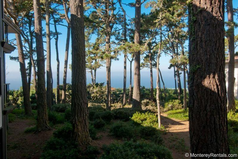 Ocean Pines #30 - Image 1 - Pebble Beach - rentals