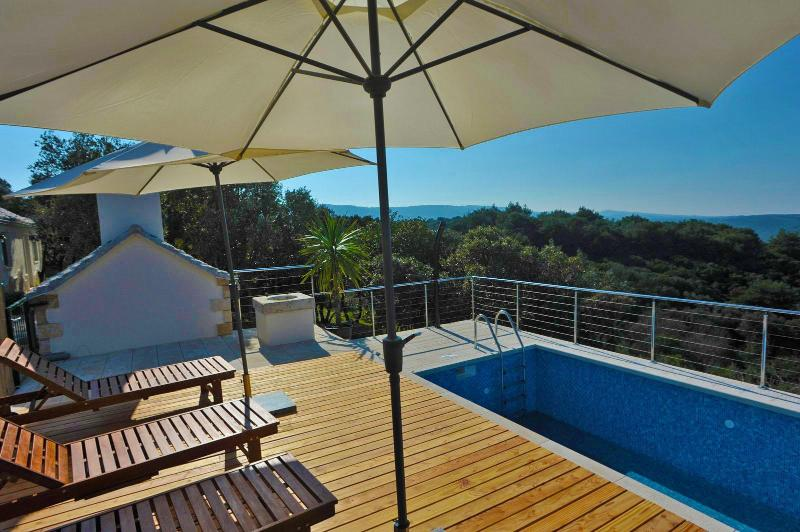 Beautiful house with pool for rent, Pucisca, Brac - Image 1 - Trogir - rentals