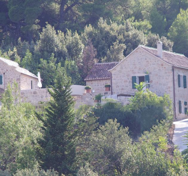 Charming Dalmatian stone villa on the Hvar island - Image 1 - Stari Grad - rentals