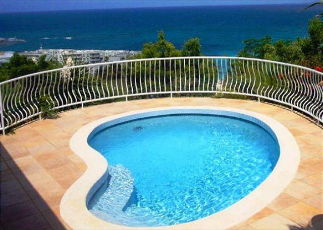 Private pool - 3 bedroom villa surrounded by tropical garden | Island Properties - Saint Martin-Sint Maarten - rentals