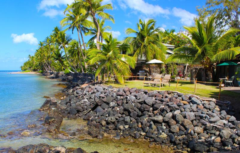 Oceanfront lawn area - Lahaina Oceanfront Treasure - Lahaina - rentals