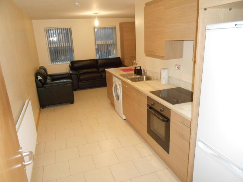 Kitchen / Living Area - University Lodge Apartments~Queens Quarter Belfast - Belfast - rentals