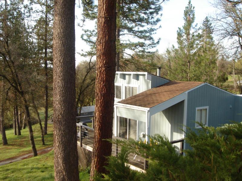 The deck of house 2 Artist's Studio - ARTIST'S STUDIO CABIN at Sequoia Resort - house 2 - Badger - rentals