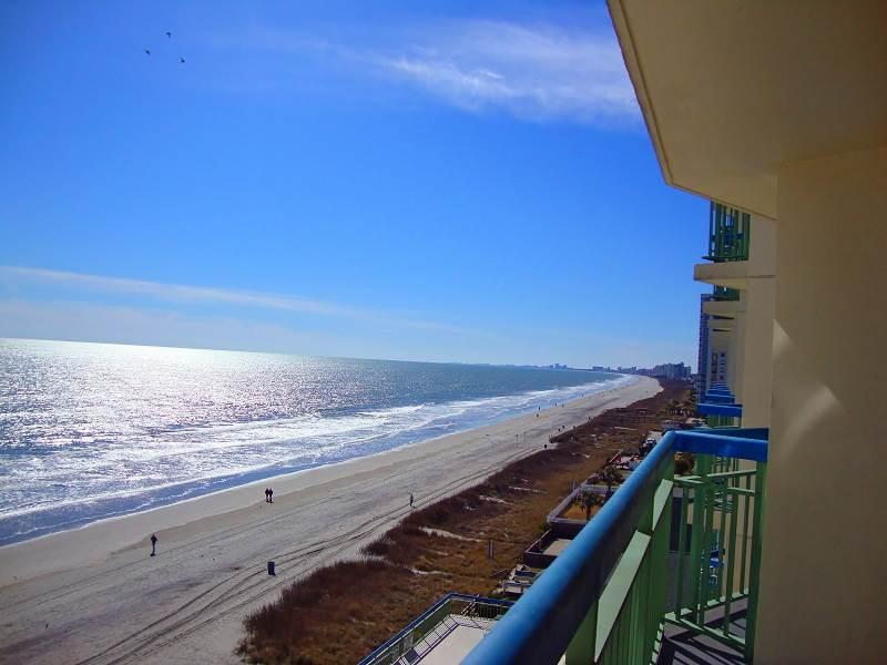 The Oceans #808 - Image 1 - North Myrtle Beach - rentals