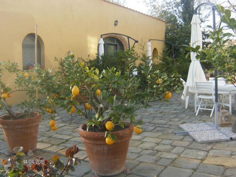 """""""Le Massucce"""" 2 Bedrooms Farmhouse in Chianti - Image 1 - San Casciano in Val di Pesa - rentals"""