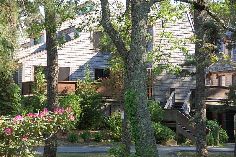 our corner unit - Relaxed Affordable Oak Bluffs- WIFI Privacy Linens - Oak Bluffs - rentals