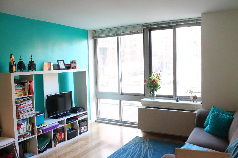 Living Space - Luxury One BR Apt Brooklyn, NY - Brooklyn - rentals