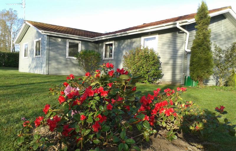 House seen from garden - Summer house in Jutland near Aalborg Airport - Hvalpsund - rentals