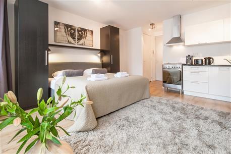 Sarphatipark Apartment 8 - Image 1 - Amsterdam - rentals