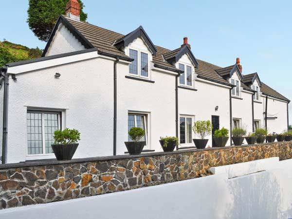BLAEN Y CWM, large family house, three woodburners, enclosed garden, Ref. 20385 - Image 1 - Burry Port - rentals