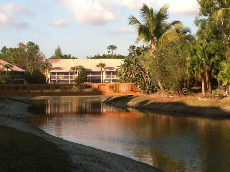 Lake and island views from the lanai - Falling Waters - ISLAND & WATER VIEWS Naples, FL - Naples - rentals