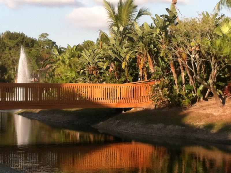 The Footbridge - Falling Waters - ISLAND & WATER VIEWS Naples, FL - Naples - rentals