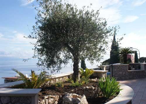 Appartamento Pirandello,terrace in Taormina centre - Image 1 - Taormina - rentals