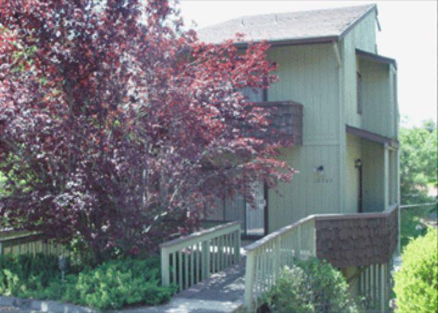 Front View - Cute house- A/C, wet bar, loft, full kitchen, BBQ, W/D - Groveland - rentals