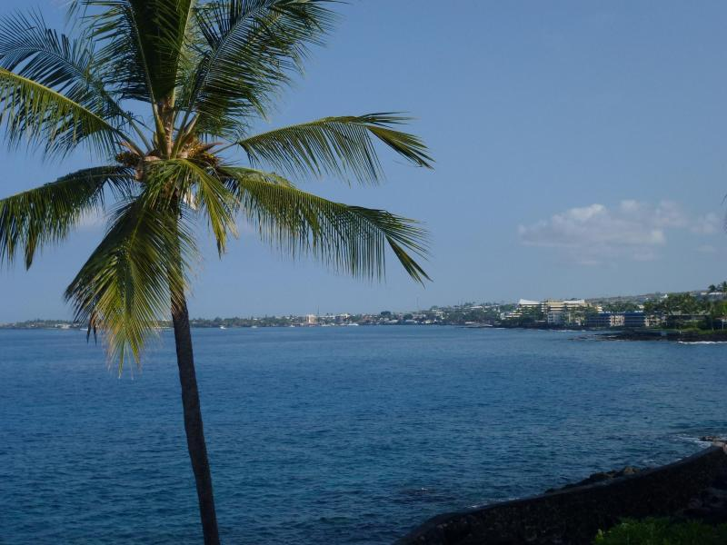 Actual View from the 2 bedroom condo - OCEANFRONT /  5 Star One of Best in the complex - Kailua-Kona - rentals