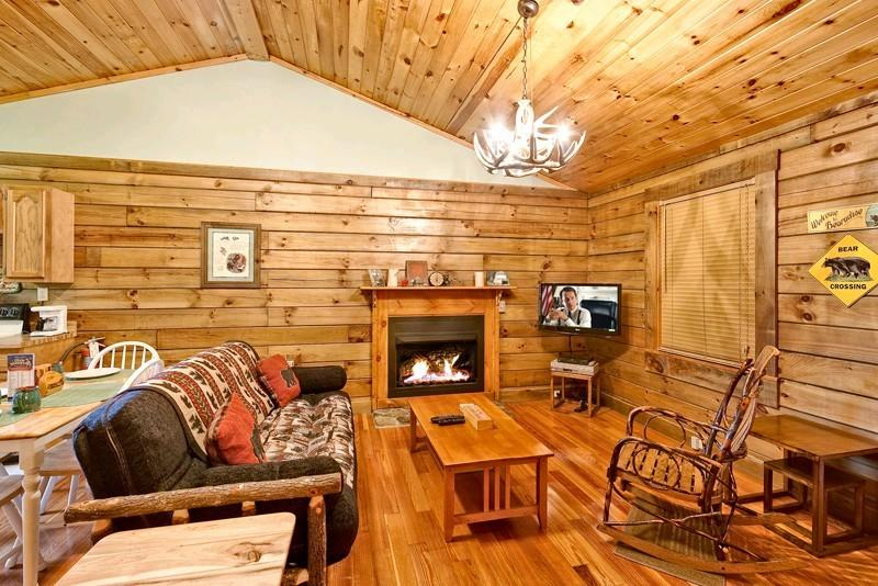 1-Living Room - BEARADISE - Pigeon Forge - rentals