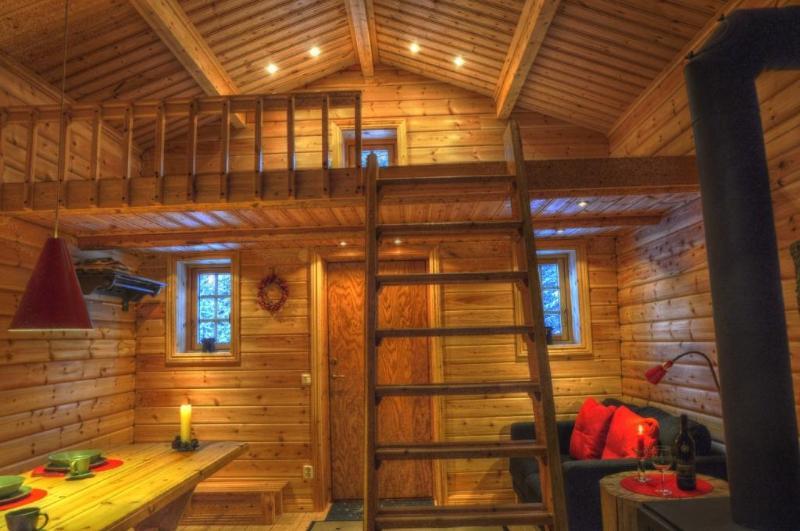 Cottage on Wild River in Lapland/Sweden - Image 1 - Sorsele - rentals