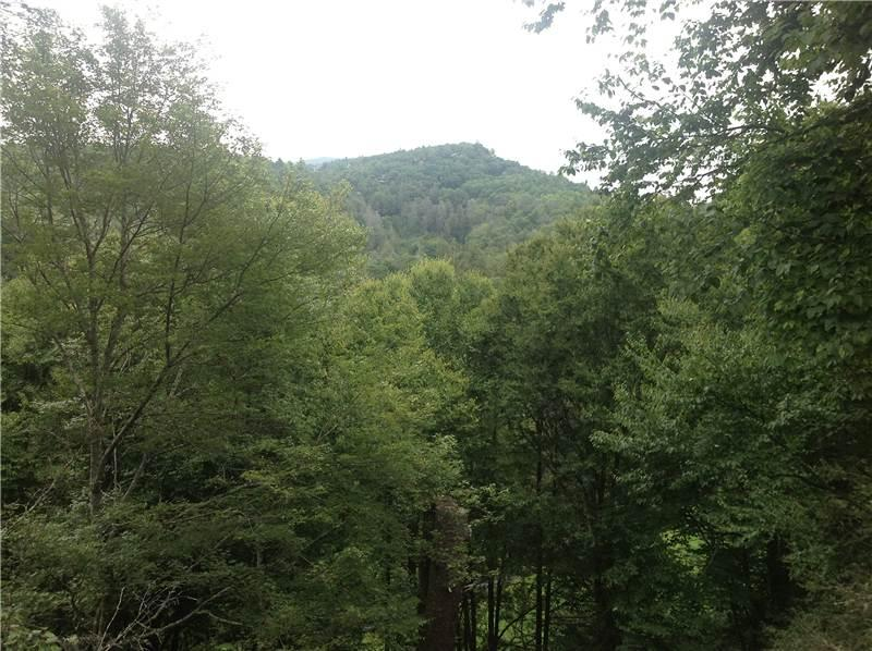 Highlands Falls Sanctuary-90 Ridge Lake #15 - Image 1 - Highlands - rentals