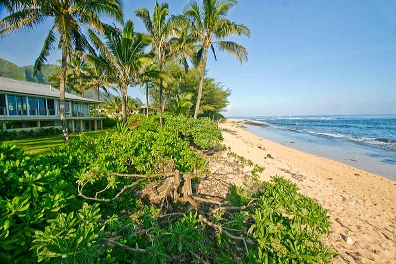 King Hale - Image 1 - Kilauea - rentals