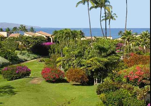 Our Sweeping ocean view down greenbelt at Ekahi 44C - Ekahi 44C Private Remodeled Oceanview Townhouse - Wailea - rentals