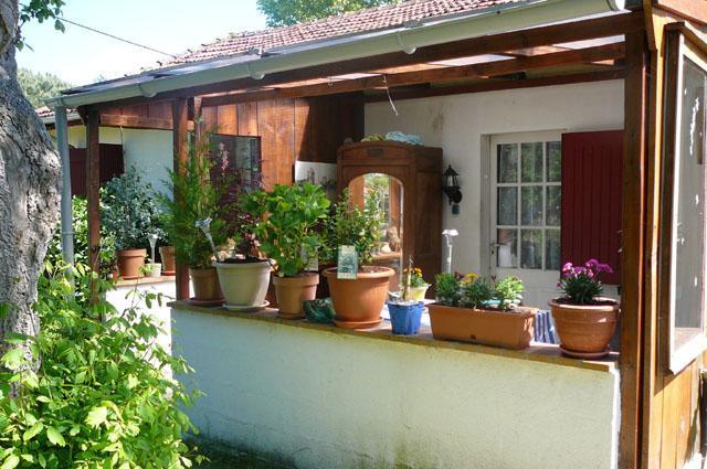 Pfauensitz, studio with garden - Image 1 - Parentis-en-Born - rentals