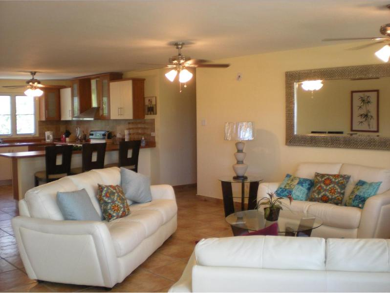 Living room - Astonishing Beach Front Condo with WIFI - Fajardo - rentals