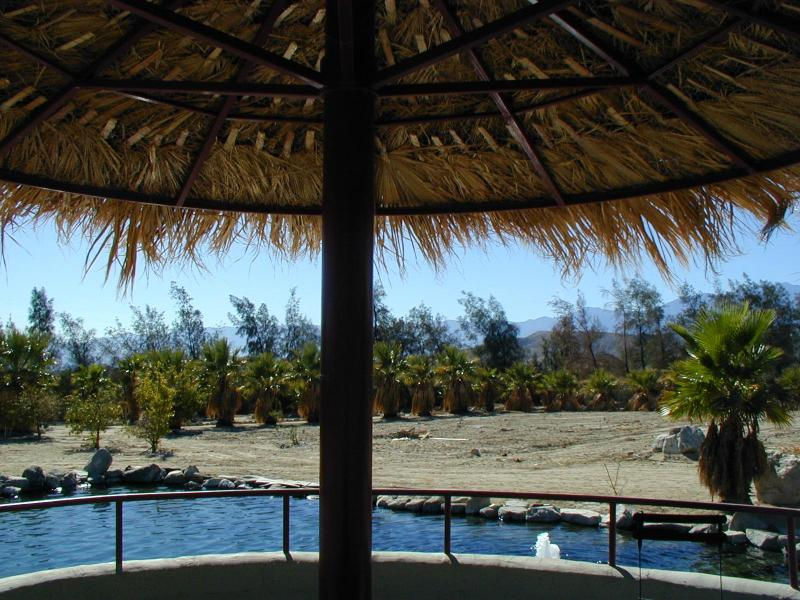 Palapa covered Patio! - Desert Oasis w/ pond in pvt. 5 Acre Palm Grove - Desert Hot Springs - rentals
