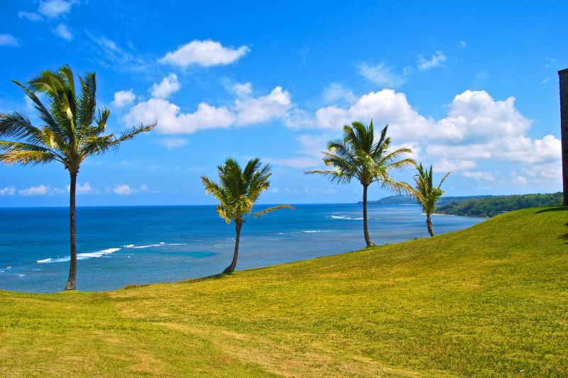View from our condo.  Five miles of coastline.  Kiluea lighthouse in the distance. - Oceanfront Condo - Princeville - rentals
