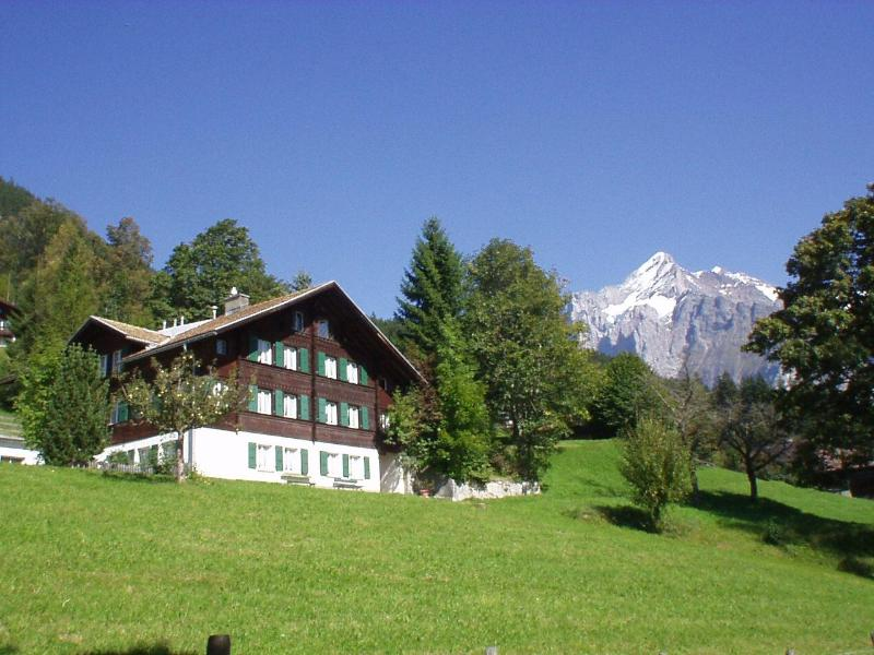 Chalet summer - Holiday apartment in Chalet ALPENRUHE - Grindelwald - rentals