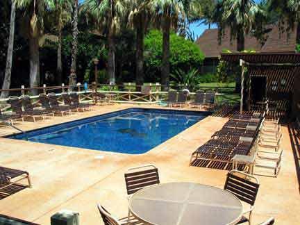 pool - Paniolo hale N3 - Maunaloa - rentals
