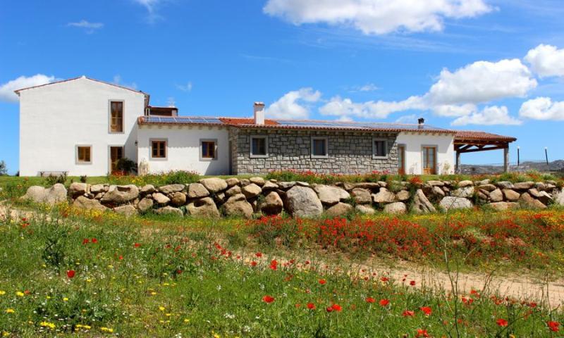 Agritourism B&B and restaurant - Agriturismo Terre di l'Alcu - B&B and Restaurant - - Arzachena - rentals