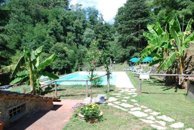 swimming pool - Agriturismo A Casa del Tosi - Lucca - rentals