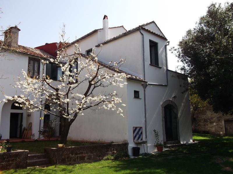 Villa Mimosa - A piece of paradise - Image 1 - Calvanico - rentals