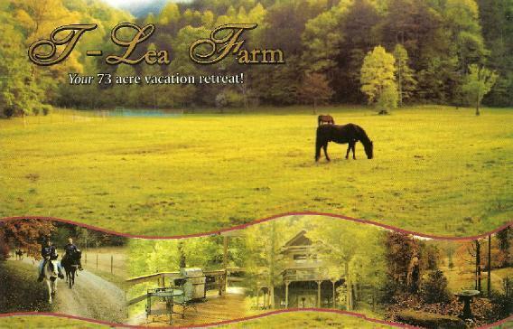 T Lea Farm - T Lea Farm - Tellico Plains - rentals