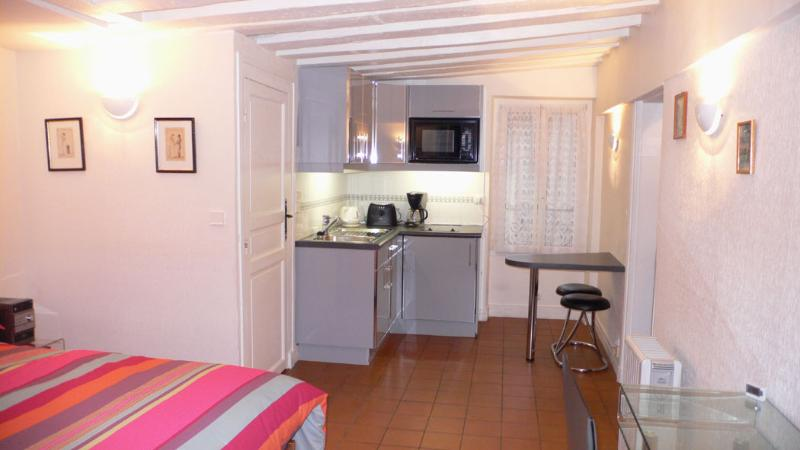 A studio with a double orientation On the cortyrad, the kitchen and the shower room. - Studio   Paris Saint Germain des Pres district (311) - Paris - rentals