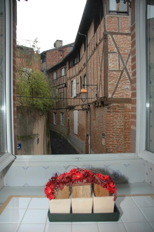 Apartment external view - Albi  Appartement familial 2/ 4 personnes - Albi - rentals