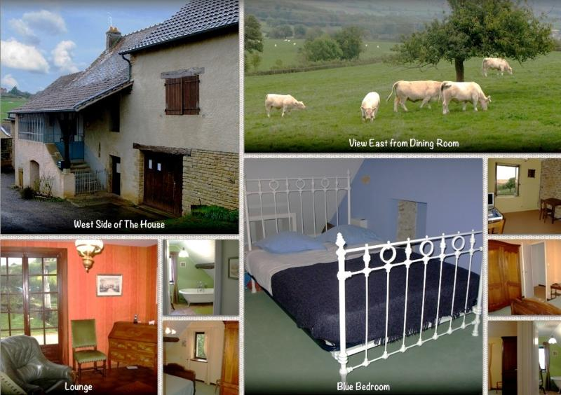 Composite of house and surroundings - The House at Le Gros Chigy - Rural Burgundy Across From a Chateau - France - rentals