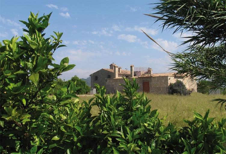 Casa Rural San Miguel Merlich - Casa Rural San MIguel Merlich (B&B) - Valencia Province - rentals