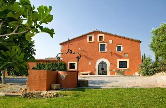Villa sourrended by vineyards, 25 min from Sitges - Image 1 - Castellet i la Gornal - rentals