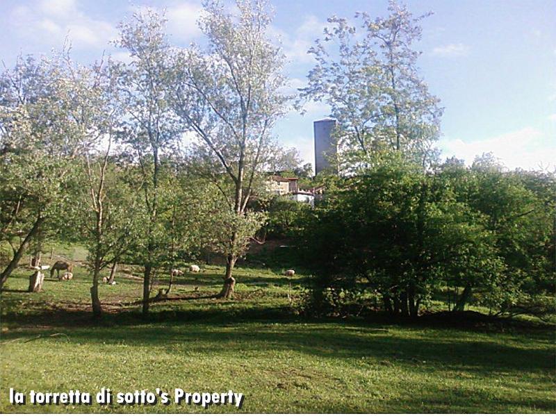 the extensive grounds of the property - La torretta di sotto, the country corner - Santa Maria della Versa - rentals