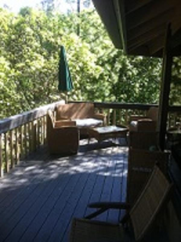 Pine Grove Villa - Image 1 - Coarsegold - rentals